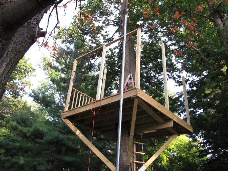 Smallest Tree House In The World th22
