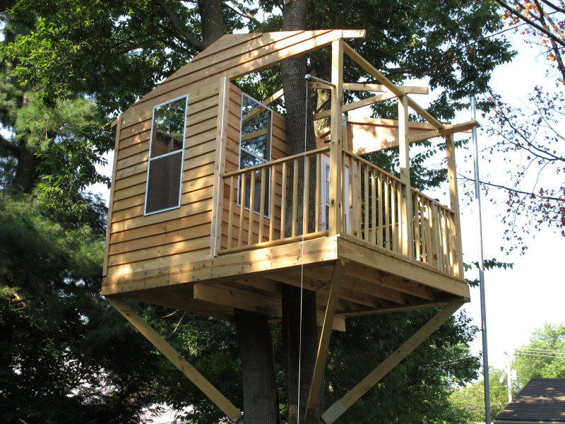 Smallest Tree House In The World th40