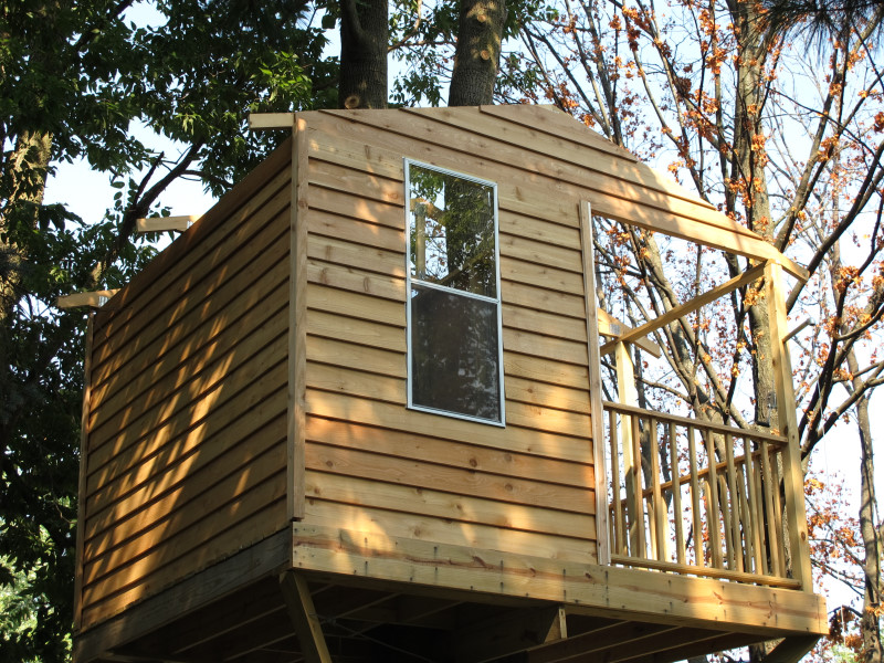 Below Are 10 Shots Of The Treehouse With Everything Done